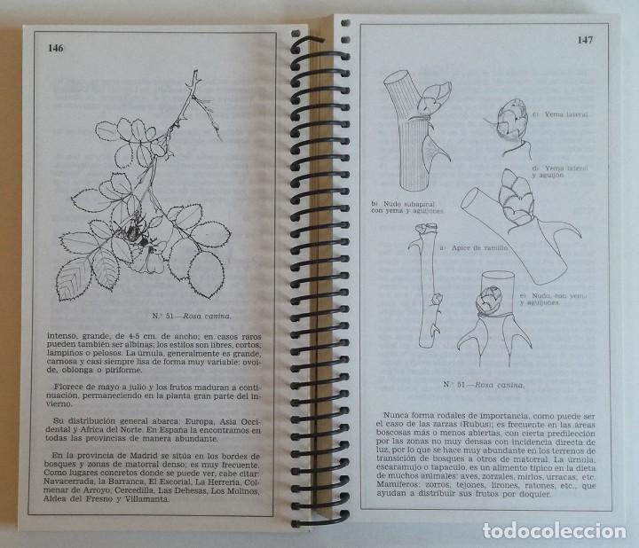 Libros: GUIA DE LA FLORA MAYOR DE MADRID-2ª edicion - Foto 2 - 220305733