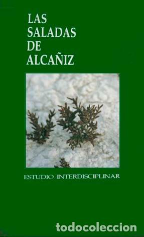 ANENTO, SELFA (Y) JIMENEZ (EDS.).LAS SALADAS DE ALCAÑIZ. ESTUDIO INTERDISCIPLINAR. 1997. (Libros Nuevos - Humanidades - Geografía)