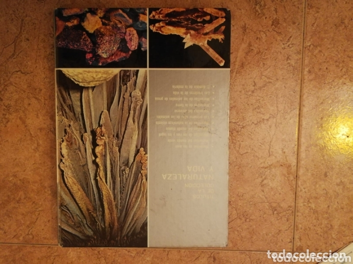 Libros: Libro maravillas de la tierra - Foto 2 - 172980822