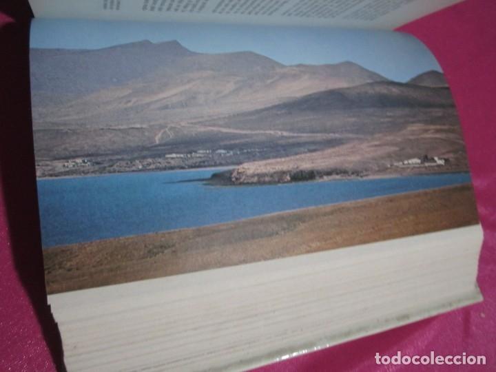 Libros: FUERTEVENTURA EN LA NATURALEZA Y LA HISTORIA DE CANARIAS CISNEROS - Foto 5 - 182331163