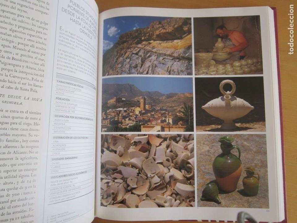 Libros: Las observaciones de Cavanilles. Doscientos años después. Completo Castellano 4 tomos -OFERTA!! - Foto 20 - 205402066