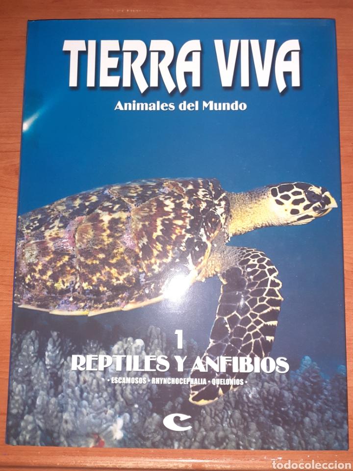 LIBRO TIERRA VIVA RESTILES Y ANFIBIOS (Libros Nuevos - Humanidades - Geografía)