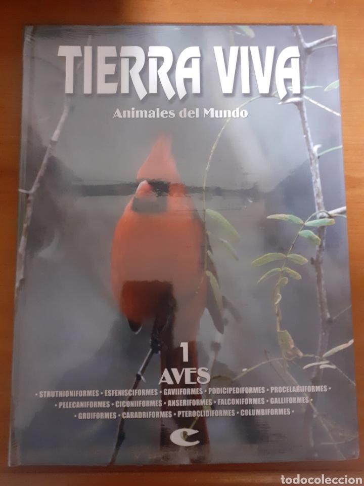 LIBRO TIERRA VIVA AVES 1 (Libros Nuevos - Humanidades - Geografía)