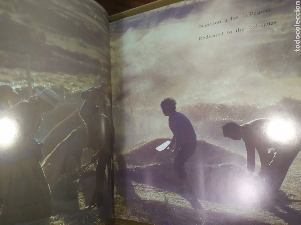 Libros: Descubriendo el Valle del Colca, Perú. Prólogo de Mario Vargas Llosa - Foto 3 - 248758135