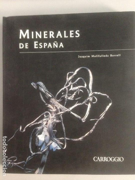 MINERALES DE ESPAÑA, PREMIO AL LIBRO MEJOR EDITADO, EDITORIAL CARROGGIO (Libros Nuevos - Ciencias, Manuales y Oficios - Geología)