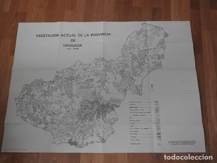 Libros: MEMORIA Y MAPAS DE SUELOS Y VEGETACION DE LA PROVINCIA DE GRANADA (INCLUYE SIERRA NEVADA), 1980 - Foto 3 - 218481367