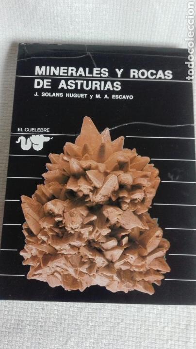 MINERALES Y ROCAS DE ASTURIAS (Libros Nuevos - Ciencias, Manuales y Oficios - Geología)