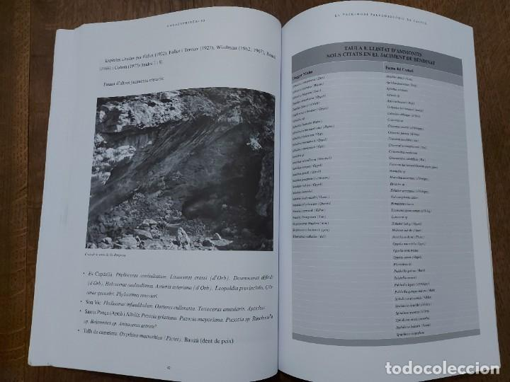 Libros: El patrimoni paleontologic de Calviá. Bernat Morey Colomar i Joan Ripoll Romaguera. Palma de Mallorc - Foto 6 - 206758786