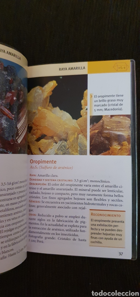 Libros: MINIGUIA DE BOLSILLO MINERALES TIKAL EN EXCELENTE ESTADO - Foto 3 - 211558731
