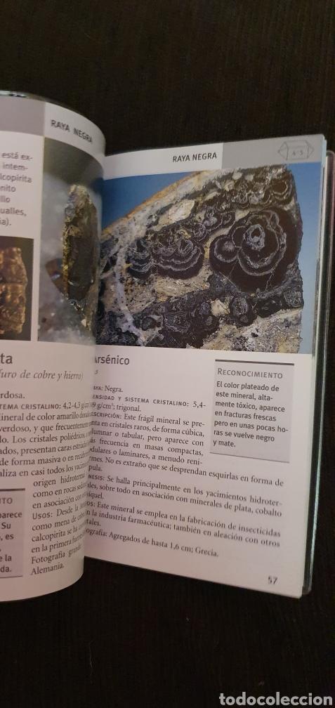 Libros: MINIGUIA DE BOLSILLO MINERALES TIKAL EN EXCELENTE ESTADO - Foto 5 - 211558731