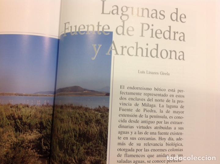 Libros: Patrimonio geológico de Andalucía. Enresa. 1999. 31x25x3 cm. Nuevo, impecable. - Foto 3 - 251434660