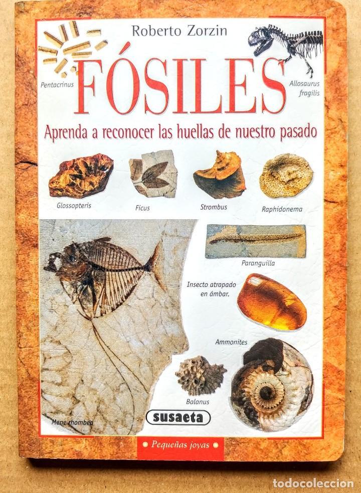 FOSILES.ROBERTO ZORZIN.SUASAETA (Libros Nuevos - Ciencias, Manuales y Oficios - Geología)