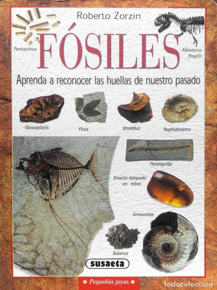 FÓSILES, APRENDA A RECONOCER LAS HUELLAS DE NUESTRO PASADO (Libros Nuevos - Ciencias, Manuales y Oficios - Geología)