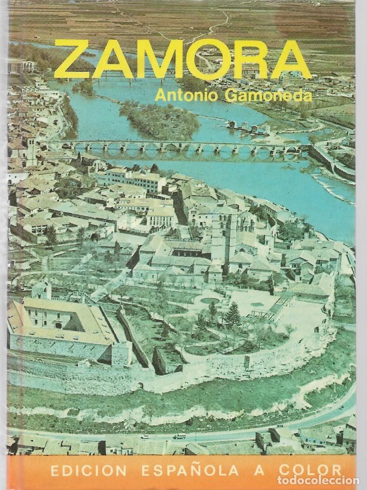 LIBRO - ZAMORA - AUTOR ANTONIO GAMONEDA - AÑO 1981 - EDICION ESPAÑOLA A COLOR (Libros Nuevos - Ocio - Guía de Viajes)