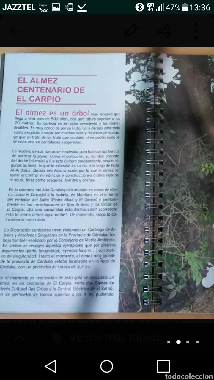 Libros: Libro bloc 12 RUTAS JUNTO AL GUADALQUIVIR - Foto 2 - 125910020