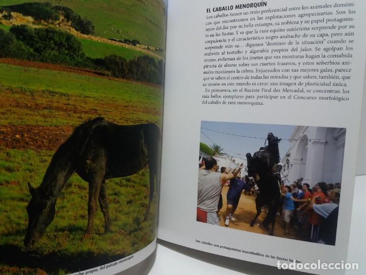 Libros: MAGNIFICA GUIA DE MENORCA CON TODO LO QUE HAY QUE CONOCER NUEVA DE LIBRERIA - Foto 18 - 222089400