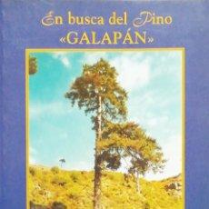Libros: EN BUSCA DEL PINO GALAPÁN. CAZORLA, SEGURA Y LAS VILLAS - JAEN. Lote 261689160