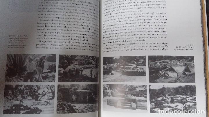 Libros: UN PALACIO EN LA CIUDAD DE LOS DIOSE TEOTIHUACAN - Foto 10 - 117229911
