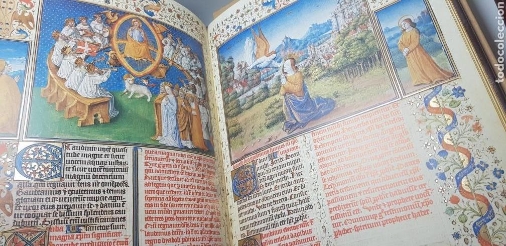 Libros: APOCALIPSIS FIGURADO DE LOS DUQUES DE SABOYA.facsimil. - Foto 7 - 147823032