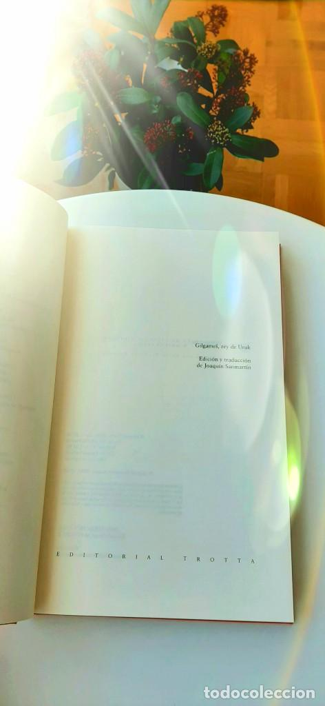 Libros: Mitos Mesopotámicos. Enuma Elish, Lambert2013. Gilgamesh, Sanmartín2018. Dalley2008. Livingstone2007 - Foto 21 - 235013875