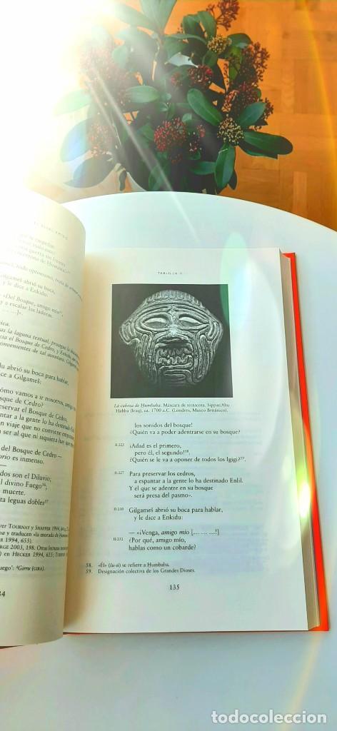 Libros: Mitos Mesopotámicos. Enuma Elish, Lambert2013. Gilgamesh, Sanmartín2018. Dalley2008. Livingstone2007 - Foto 23 - 235013875