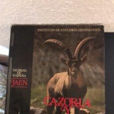 Libros: LIBRO CAZORLA Y SEGURA. INSTITUTO DE ESTUDIOS GIENNENSES. Lote 118065792