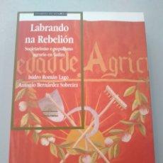 Libros: LABRANDO NA REBELIÓN. ISIDRO ROMÁN. ANTONIO BERNÁRDEZ. A NOSA TERRA. 9788483411834. Lote 168804780