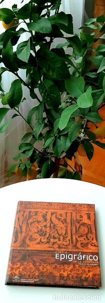 Libros: Hispania Andalusí. González Ferrín 2016. Alhambra 2007. Pirenne 2015. Anes 2004. Trenllet 2017 - Foto 5 - 229902375