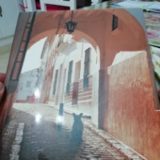 Libros: LA VILLA DE CASTRO DEL RÍO DURANTE EL ÚLTIMO TERCIO DEL SIGLO XVI. Lote 244745895