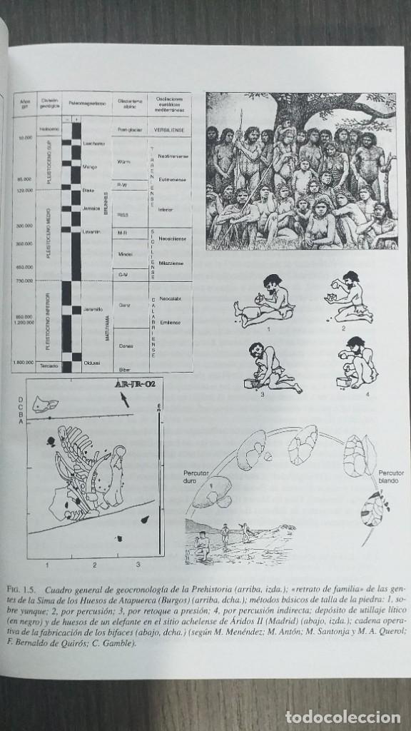 Libros: *** LIBRO - HISTORIA *** ACADEMICO *** PREHISTORIA DE LA PENINSULA IBERICA *** - Foto 3 - 248635335