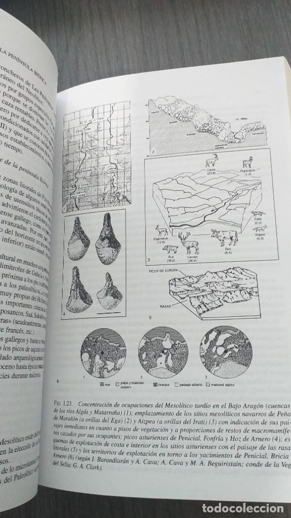 Libros: *** LIBRO - HISTORIA *** ACADEMICO *** PREHISTORIA DE LA PENINSULA IBERICA *** - Foto 7 - 248635335