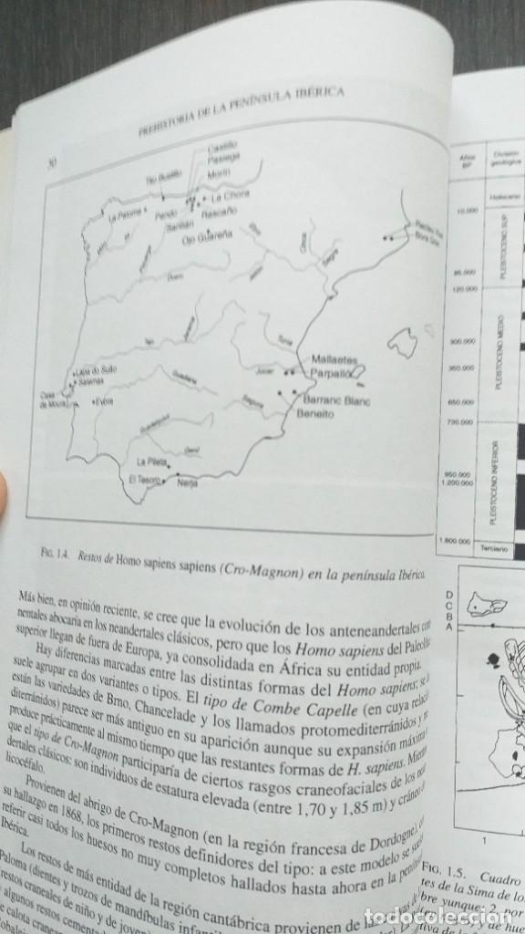 Libros: *** LIBRO - HISTORIA *** ACADEMICO *** PREHISTORIA DE LA PENINSULA IBERICA *** - Foto 10 - 248635335