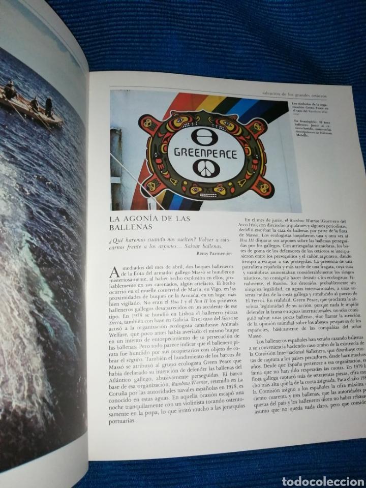 Libros: LIBRO ANUARIO 1980, VELA DE ARMAS, PERIODISMO,.. MÁS SINGLE CON TESTIMONIOS SONOROS, ED. DEL TIEMPO - Foto 11 - 246115495