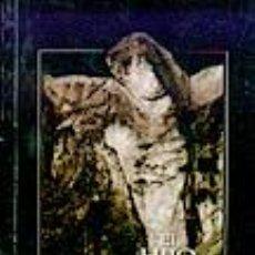 Libros: EL HIJO DEL VIUDO SERRANO MIGUEL GASTOS DE ENVIO GRATIS. Lote 243628595