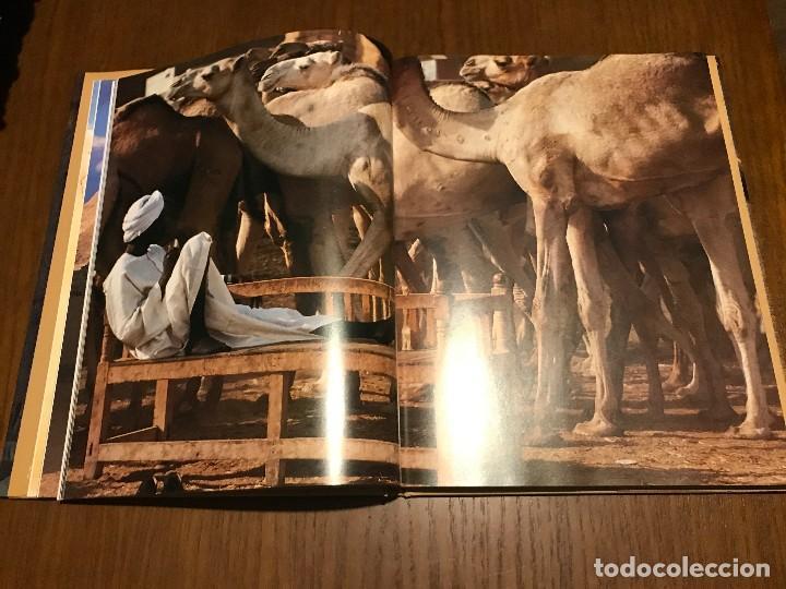 Libros: EGIPTO. TEXTO MICHELE LASSEUR. FOTOS SYLVAIN GRANDADAM - Foto 6 - 112794739
