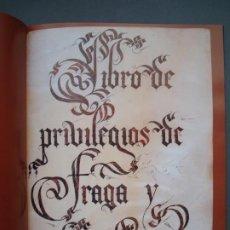Libros: LIBRO DE PRIVILEGIOS DE FRAGA Y SUS ALDEAS. I: ED FACSÍMIL. II: TRANSCRIPCIÓN,ESTUDIOS.CORTES ARAGÓN. Lote 215182983