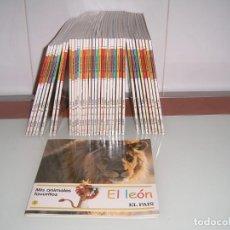 Libros: MIS ANIMALES FAVORITOS. Lote 138857646