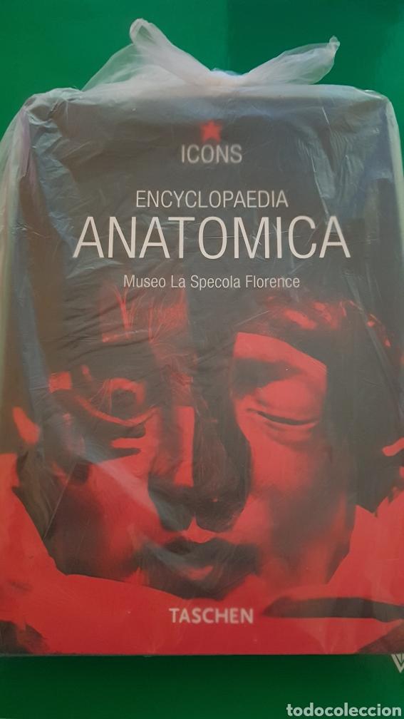 ANATÓMICA (Libros Nuevos - Humanidades - Otros)