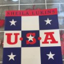 Libros: USA COOKBOOK. Lote 161551393