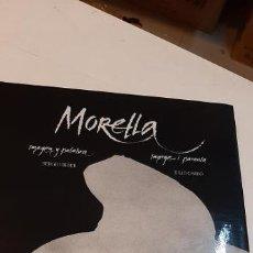 Libros: MAGNIFICO LIBRO MORELLA. Lote 227624455