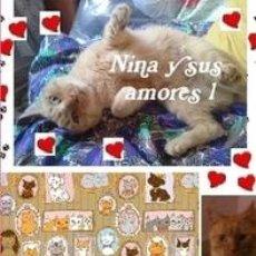 Libros: NINA Y SUS AMORES 1. Lote 150040438