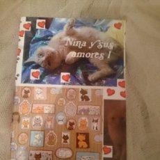 Libros: NINA Y SUS AMORES 1. Lote 150797066