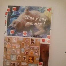 Libros: NINA Y SUS AMORES 1. Lote 151290034