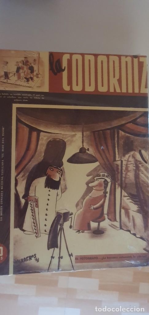 LIBROS LA CORDORNIZ (Libros Nuevos - Literatura - Narrativa - Humor)