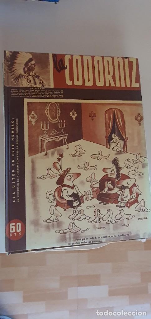 Libros: Libros la Cordorniz - Foto 3 - 207971663
