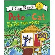 Livres: LIBRO DE PETE THE CAT. Lote 169131676