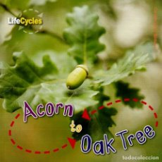 Libros: ACORN TO OAK TREE TAPA FLEXIBLE. Lote 184362625