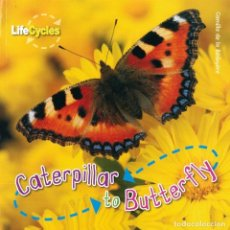 Libros: CATERPILLAR TO BUTTERFLY TAPA FLEXIBLE. Lote 184363786
