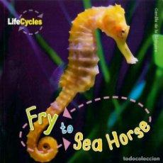Libros: FRY TO HORSE TAPA FLEXIBLE. Lote 184366098