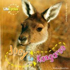 Libros: JOEY TO KANGAROO TAPA FLEXIBLE. Lote 184366468